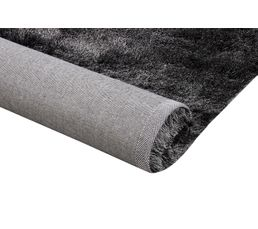 Tapis Pour Votre Salon - Tapis 60X90 cm SILKY Noir