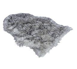 Tapis Pour Votre Salon - Tapis 65x90 cm LOUP gris