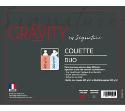 Couette 220x240 cm SIGNATURE GRAVITY DUO