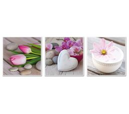 Photographies - Set de 3 Box Art 20X20 ROMANCE Rose/Blanc