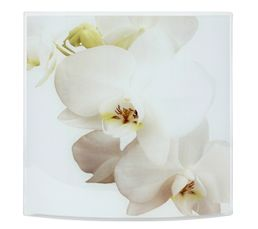 ORCHIDEE Applique