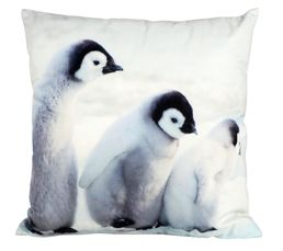 Coussins - COUSSIN PINGOUIN BLANC GLACIER BLANC