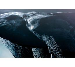Plateau en verre L 120 ELEPHANT Gris noir