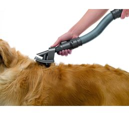 Brosse pour animaux DYSON Groom 921000-01