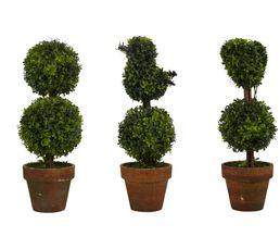 Arbre buisson assortis SEVIGNE Vert