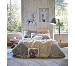 Coussin 60x60 cm ALASKA blanc
