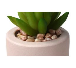Pot cactus en ciment H. 15 cm SEATTLE Nude