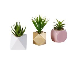 Plante artificielle pot H18cm Assortis