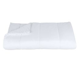 NEWSOFT  CTSOFBU021420