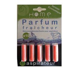 Parfum aspirateur HOME EQUIPEMENT Fraicheur x 10 batonnets