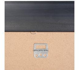 Miroir 43X133 cm ZEBRA Argent