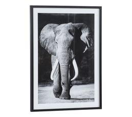 Image 50x70 cm ELEPHANT Noir
