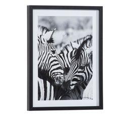 Image 30x40 cm ZEBRES CALIN Noir / Blanc