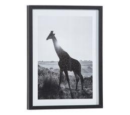 Image 30x40 cm GIRAFE SOLEIL Noir