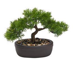 Bonsai H. 23 cm  Vert