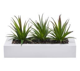Centre de table ALOE VERA Blanc