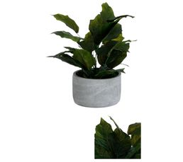 ETHNIC CHIC Plante verte artificielle + Pot en ciment POT GRIS