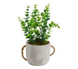 FLORA Plante pot ciment à suspendre Vert