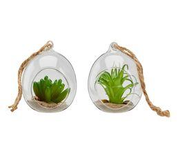 Boule verre cactus BLANC NATURE Vert