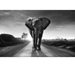 ELEPHANT Plateau en verre L 150 Gris