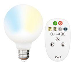 Kit ampoule LED globe G95 E27 iDual Opale