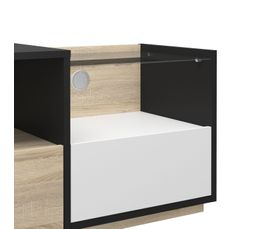Meuble TV 2 tiroirs 2 niches ROBIN 69990-86AK49