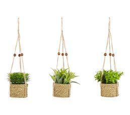 plante suspendre h 12 cm cordoue naturel objets poser but. Black Bedroom Furniture Sets. Home Design Ideas
