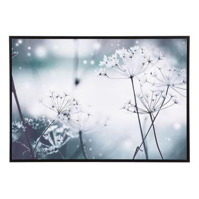 FLOWERS  Noir et blanc
